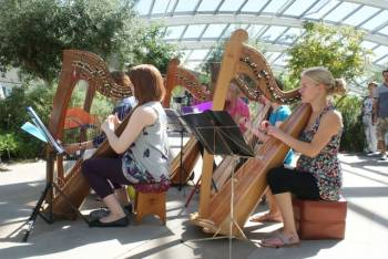 Summer Harp Festival – National Botanic Garden of Wales