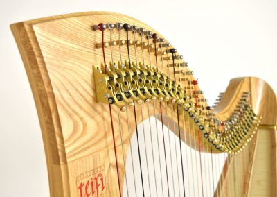 Neck view of a Telynau Teifi 34-string Telor folk lever harp in ash