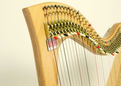 Neck view of a Siff Saff lever harp in beech