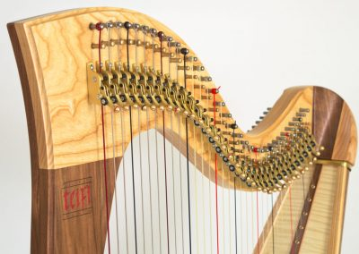 Neck view of a Teifi Telor 34 String Folk Lever Harp in Harlequin (Wood Mix)