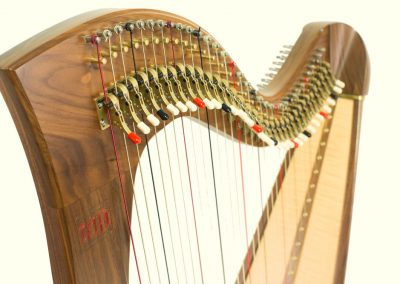 Neck view of a Telynau Teifi 34-string Telor Folk Lever Harp in Walnut